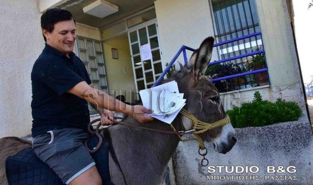 Εκλογές 2015: Έφιπποι σε εκλογικό τμήμα του Ναυπλίου - Όλη η οικογένεια πάνω σε γαϊδούρια & άλογα - Κυρίως Φωτογραφία - Gallery - Video