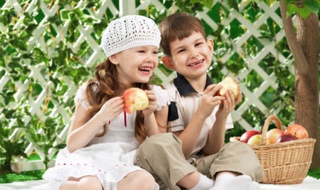 «Οδηγίες Διατροφής» για τους μαθητές - Τι πρέπει να τρώνε για να έχουν ενέργεια;     - Κυρίως Φωτογραφία - Gallery - Video