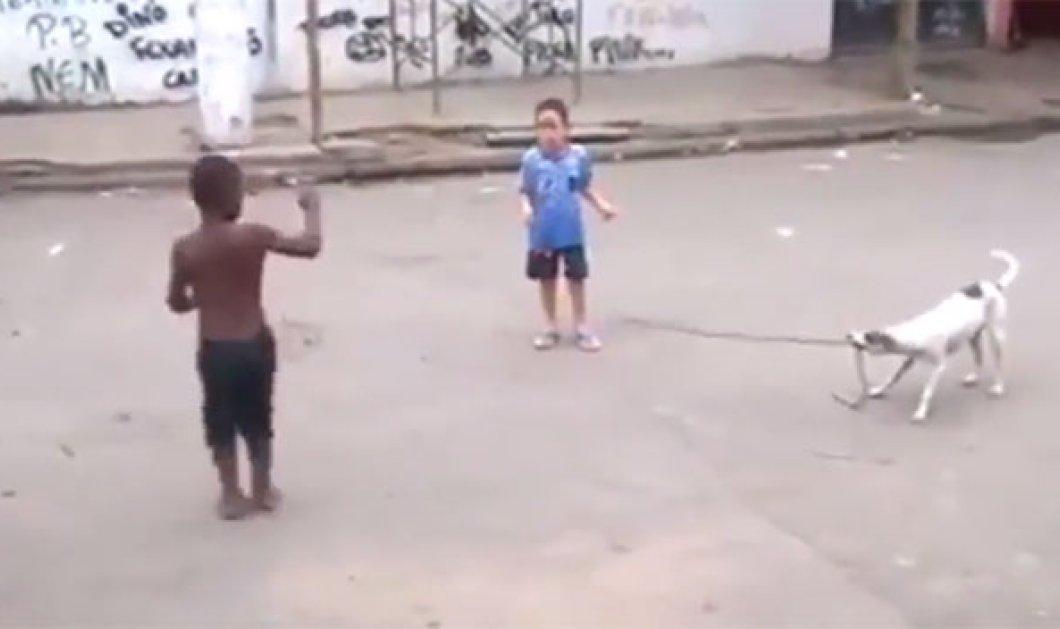 Βίντεο: Πανέξυπνος σκύλος παίζει σκοινάκι μαζί με τα παιδιά στη Βραζιλία - Κυρίως Φωτογραφία - Gallery - Video