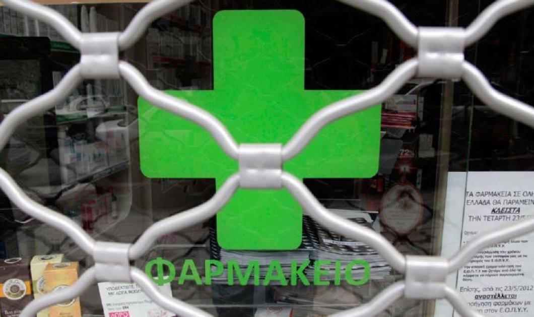 Κανείς δεν τα βάζει με το φαρμακείο, γατάκια-  Ένα άρθρο του Σταμάτη Ζαχαρού - Κυρίως Φωτογραφία - Gallery - Video