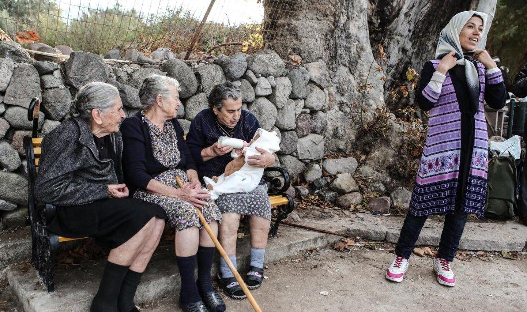 Ο διάλογος του Παυλόπουλου με την Μυτιληνιά γιαγιά που έγινε viral - Η φωτογραφία της με το μικρό προσφυγόπουλο έκανε το γύρο του κόσμου - Κυρίως Φωτογραφία - Gallery - Video