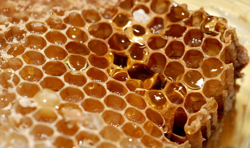 Νέες έρευνες δείχνουν πως το μέλι και το κερί ήταν δημοφιλή & χρηστικά από τη Λίθινη Εποχή  - Κυρίως Φωτογραφία - Gallery - Video