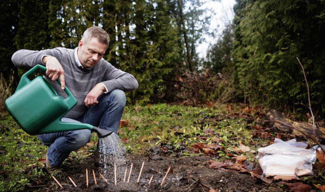 Μολύβια που φυτρώνουν! Φοιτητές του ΜΙΤ δημιούργησαν επικερδέστερη start up & φυτεύουν Sprout Pencils - Κυρίως Φωτογραφία - Gallery - Video