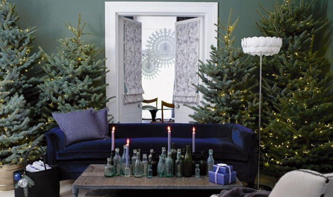 Στολίσατε; 14 ιδέες για το πιο σικ Χριστουγεννιάτικο δέντρο δικές σας - Εύκολα, γρήγορα, απλά  - Κυρίως Φωτογραφία - Gallery - Video