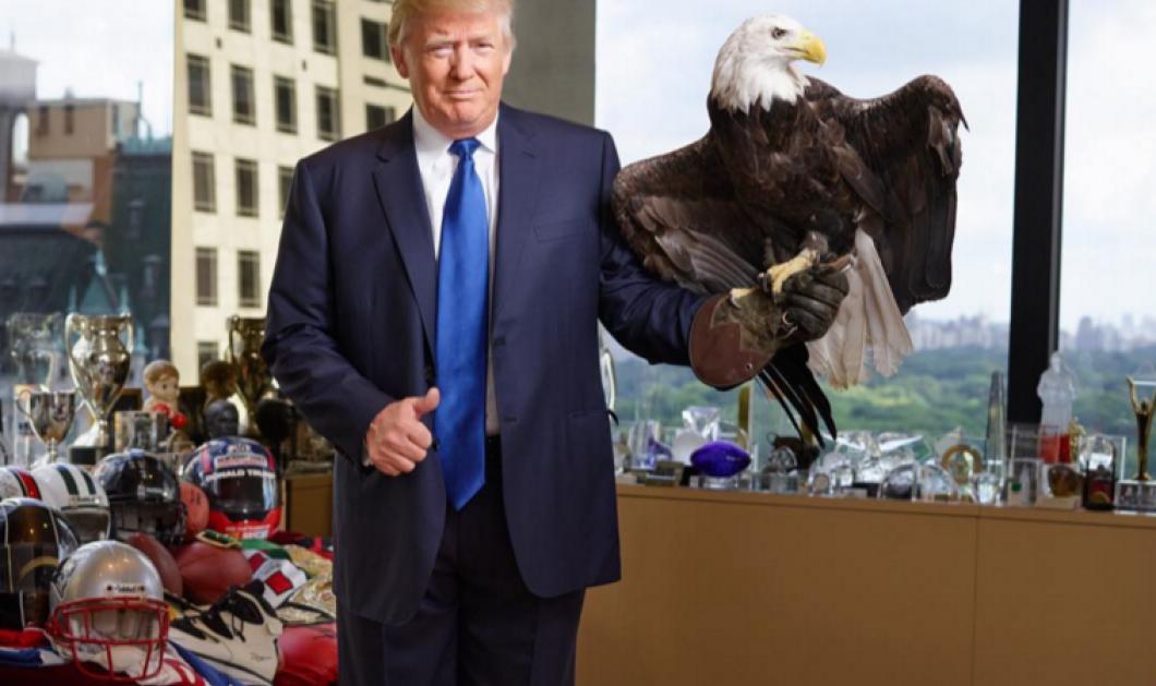 Το θέμα της ημέρας - όλα τα λεφτά: Ο Donald Trump δέχεται επίθεση από τον αετό μέσα στο γραφείο του - φώτο - βίντεο  - Κυρίως Φωτογραφία - Gallery - Video