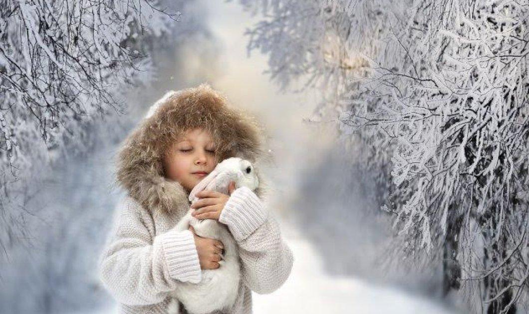 Ο χειμώνας άργησε αλλά ήρθε για να μείνει τελικά - Που θα ξεκινήσει ο παγετός;  - Κυρίως Φωτογραφία - Gallery - Video
