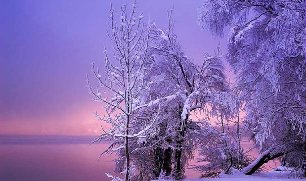 Ο καιρός πλέον ... μυρίζει Χριστούγεννα - Η θερμοκρασία στους 16 βαθμούς  - Κυρίως Φωτογραφία - Gallery - Video