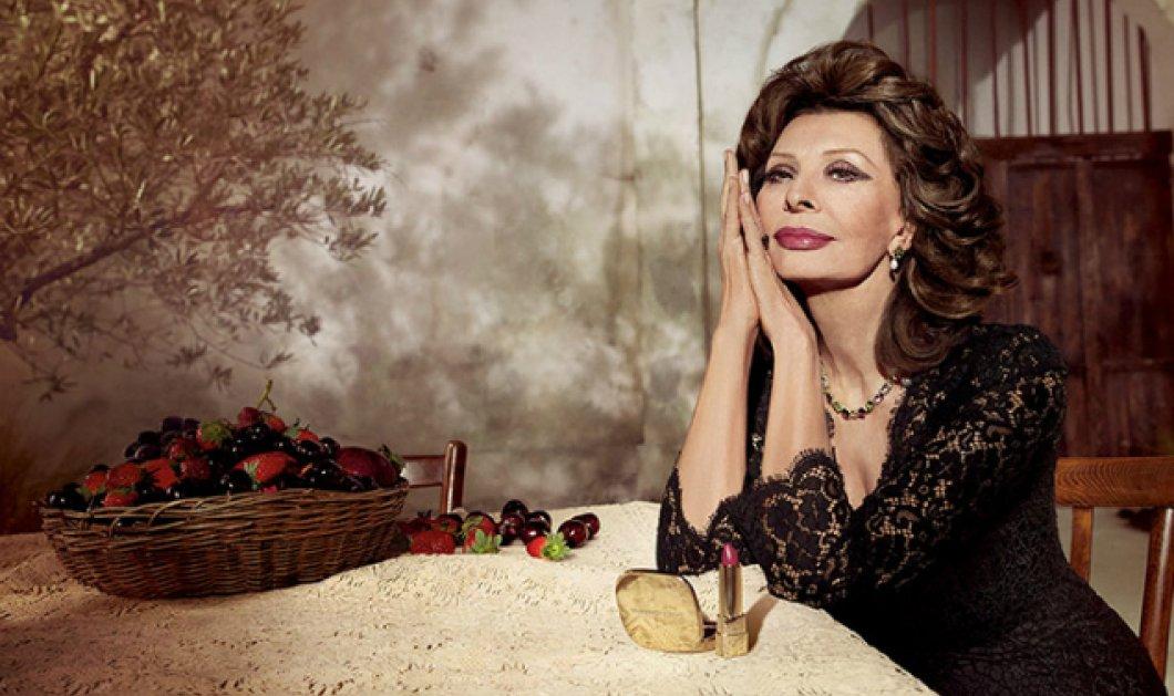 Σοφία Λόρεν: Πρωταγωνίστρια στα 82 της στη νέα διαφήμιση των Dolce & Gabbana - Φωτό & βίντεο - Κυρίως Φωτογραφία - Gallery - Video