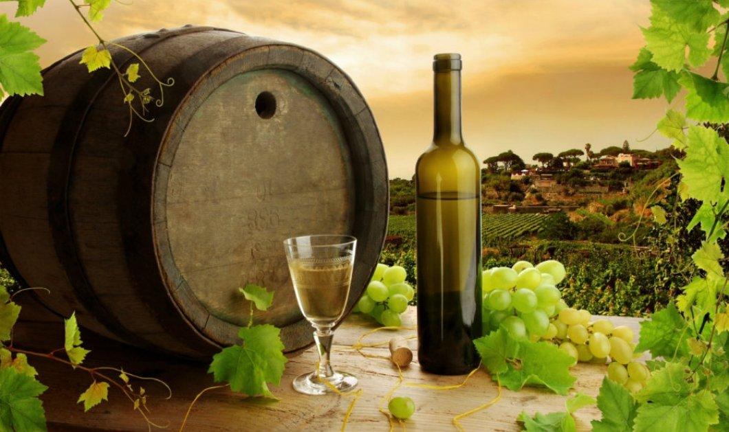 Χάος με το νέο φόρο στα κρασιά: Τι είναι οι φορολογικές αποθήκες για 650 οινοποιεία της Ελλάδος  - Κυρίως Φωτογραφία - Gallery - Video