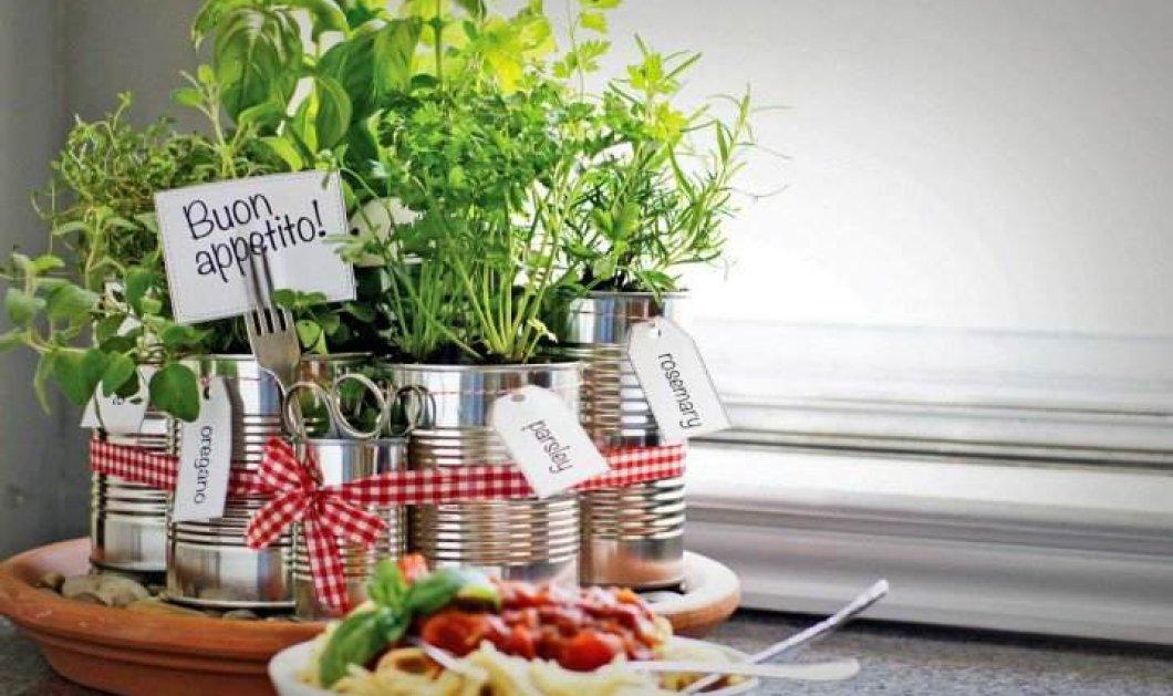 Κάντε την κουζίνα σας - βοτανόκηπο : Yπέροχες ιδέες για να βάλετε  γλαστράκια & μυρωδικά - Θα μαγειρεύετε στην φύση  - Κυρίως Φωτογραφία - Gallery - Video