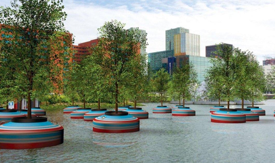 Φανταστικό! Ολόκληρο δάσος - πλωτό! Δείτε πως θα επιπλέουν τα δέντρα στο Ρότερνταμ - Φωτό - Κυρίως Φωτογραφία - Gallery - Video