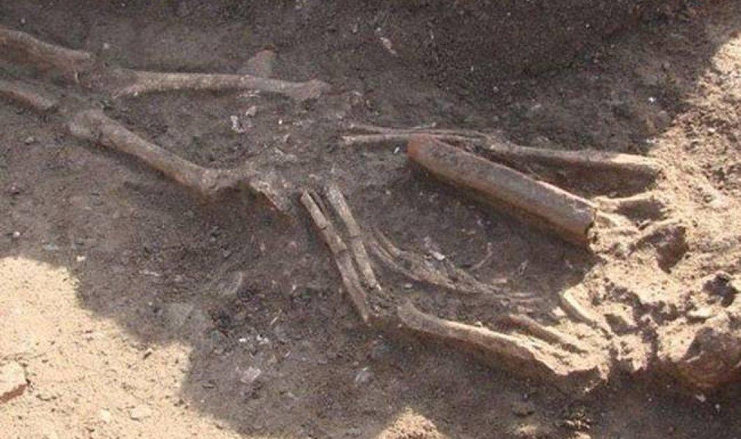 Μακελειό με ρόπαλα «η αρχαιότερη γνωστή εχθροπραξία» - 10.000 ετών τα ευρήματα - Κυρίως Φωτογραφία - Gallery - Video