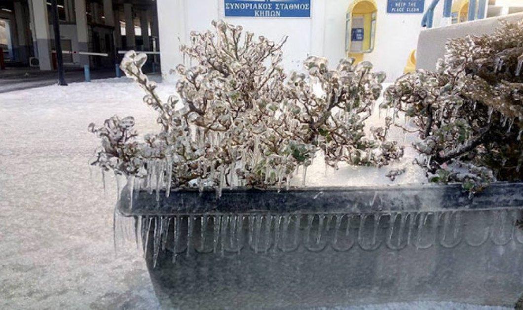 Οι ακραίες καιρικές συνθήκες στη Θράκη πάγωσαν το Τελωνείο Κήπων στον Έβρο  - Κυρίως Φωτογραφία - Gallery - Video