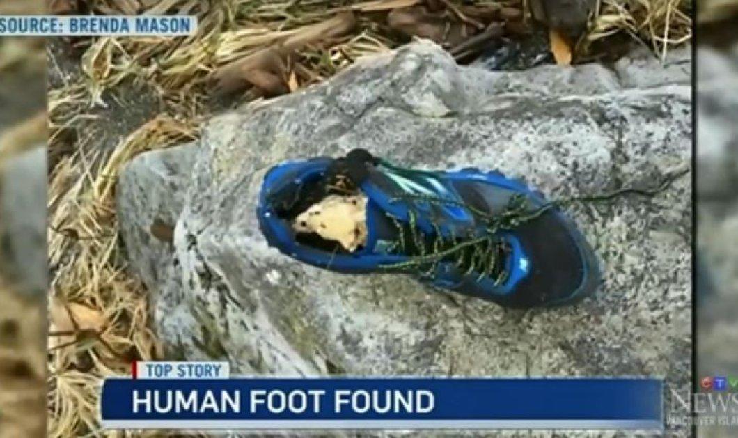 Μυστήριο στη δυτική Αμερική: Κομμένα πόδια μέσα σε παπούτσια ξεβράζονται εδώ & 9 χρόνια - Πολλές θεωρίες, καμία απάντηση - Κυρίως Φωτογραφία - Gallery - Video