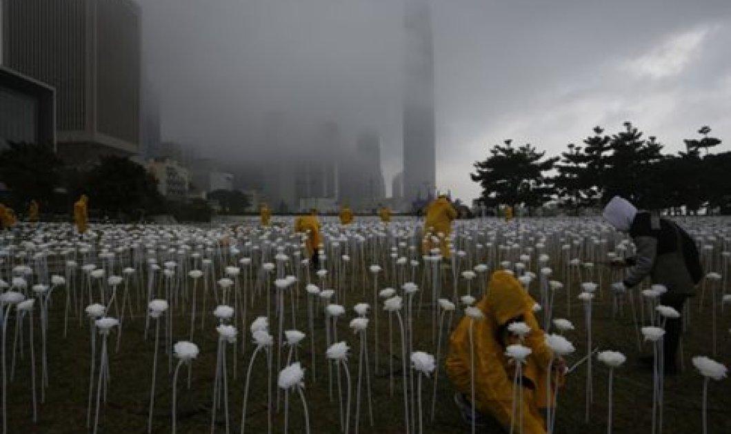 Κήπος με 25.000 τριαντάφυλλα από led θα... ανάψει στο Χονγκ Κονγκ για την ημέρα των ερωτευμένων  - Κυρίως Φωτογραφία - Gallery - Video