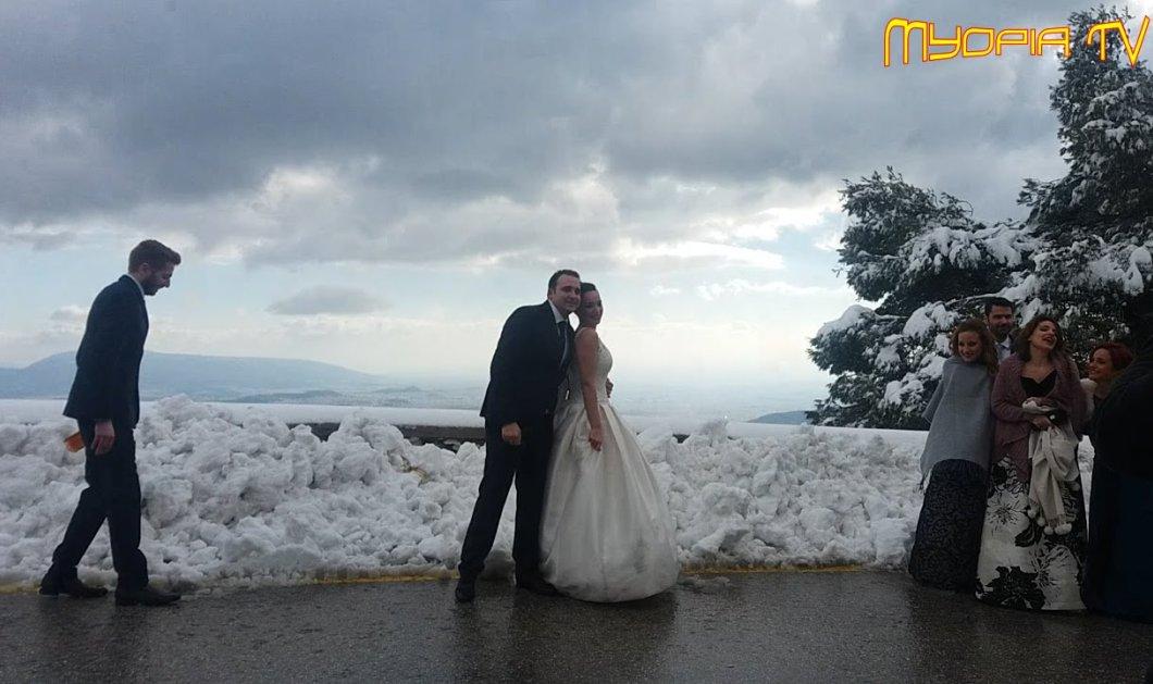 Πόζαραν για τη γαμήλια φωτογράφηση τους στην χιονισμένη Πάρνηθα - Με λασπωμένο νυφικό και παρέα με ελάφια (Βίντεο) - Κυρίως Φωτογραφία - Gallery - Video