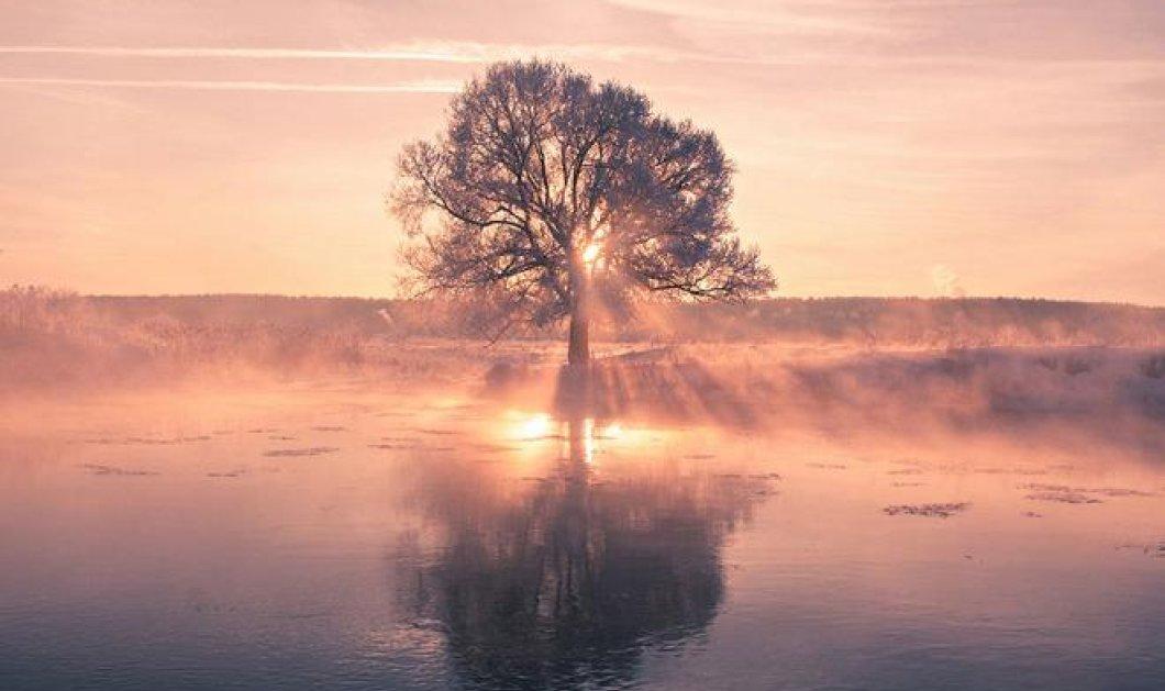 Μινσκ: Η απαράμιλλη ροζ ομορφιά στους -40 βαθμούς Κελσίου - Συναρπαστικές εικόνες!   - Κυρίως Φωτογραφία - Gallery - Video