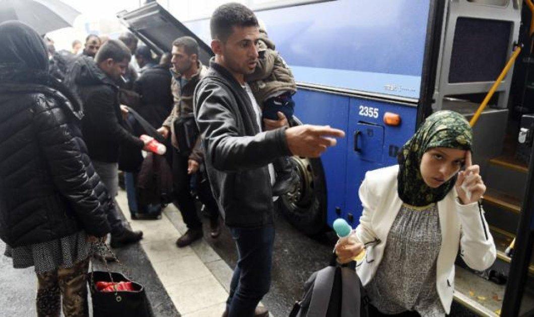 Ιρακινοί πρόσφυγες εγκαταλείπουν μαζικά τη Φινλανδία: Το κρύο & η άμισθη εργασία τους γυρνάνε πίσω - Κυρίως Φωτογραφία - Gallery - Video