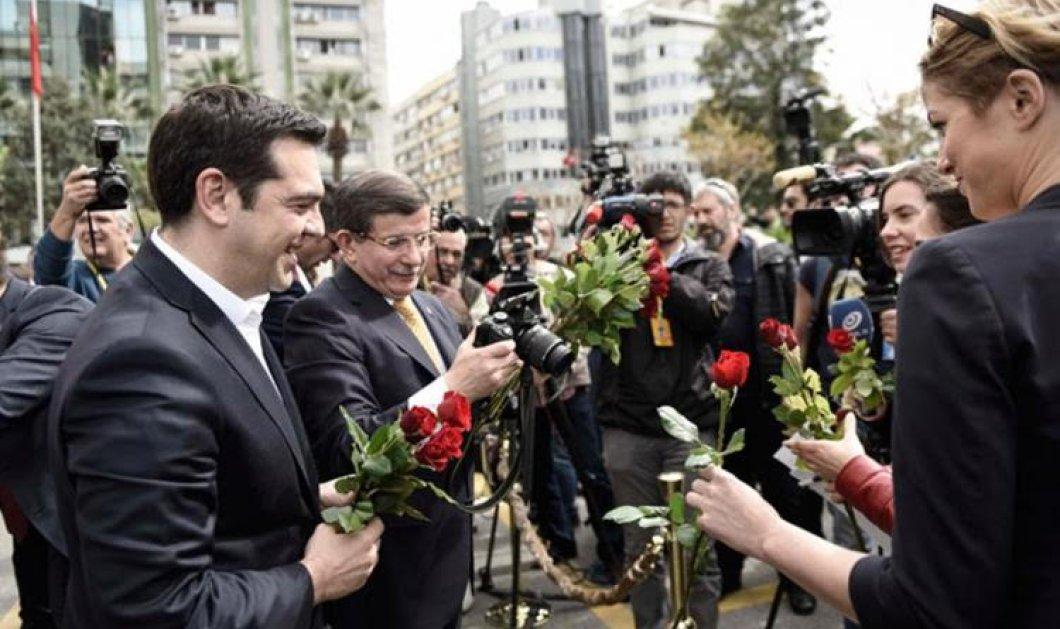 Τσίπρας: Μωρέ το' χει σας λέω: Φωτό- ιππότη με τα κόκκινα τριαντάφυλλα, minimal στυλ  & χαμόγελο Kolynos  - Κυρίως Φωτογραφία - Gallery - Video