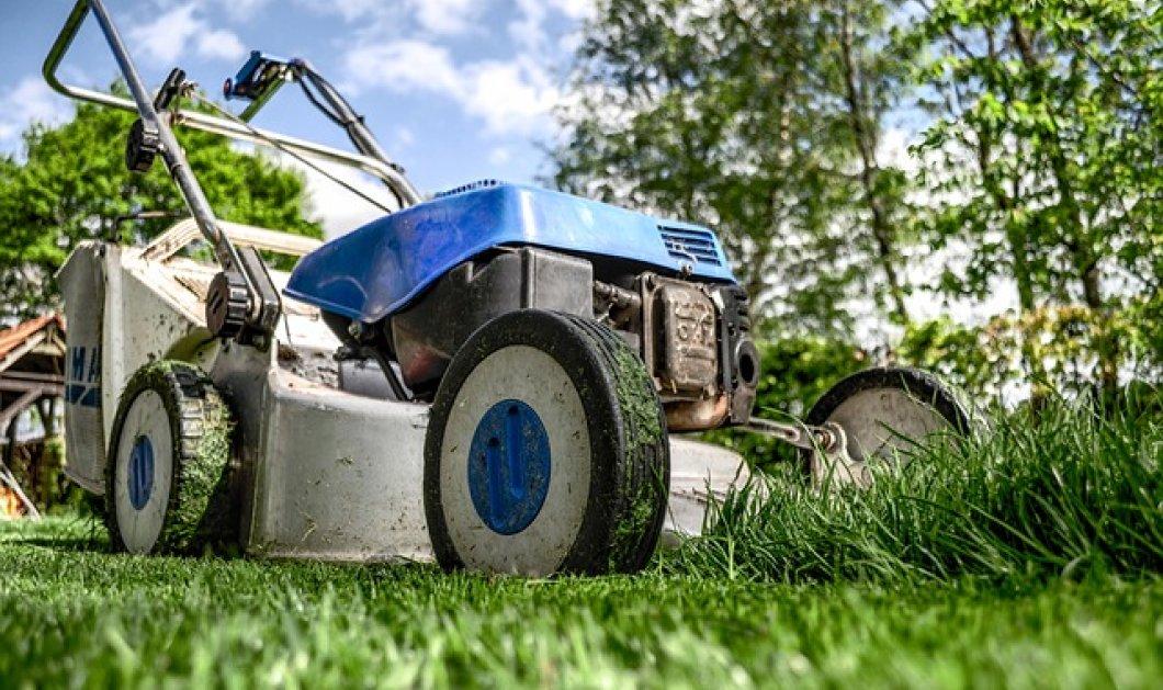 Φιλανδία: Οι ταχυδρομικοί υπάλληλοι γίνονται και... κηπουροί για να μην χάσουν την δουλειά τους   - Κυρίως Φωτογραφία - Gallery - Video