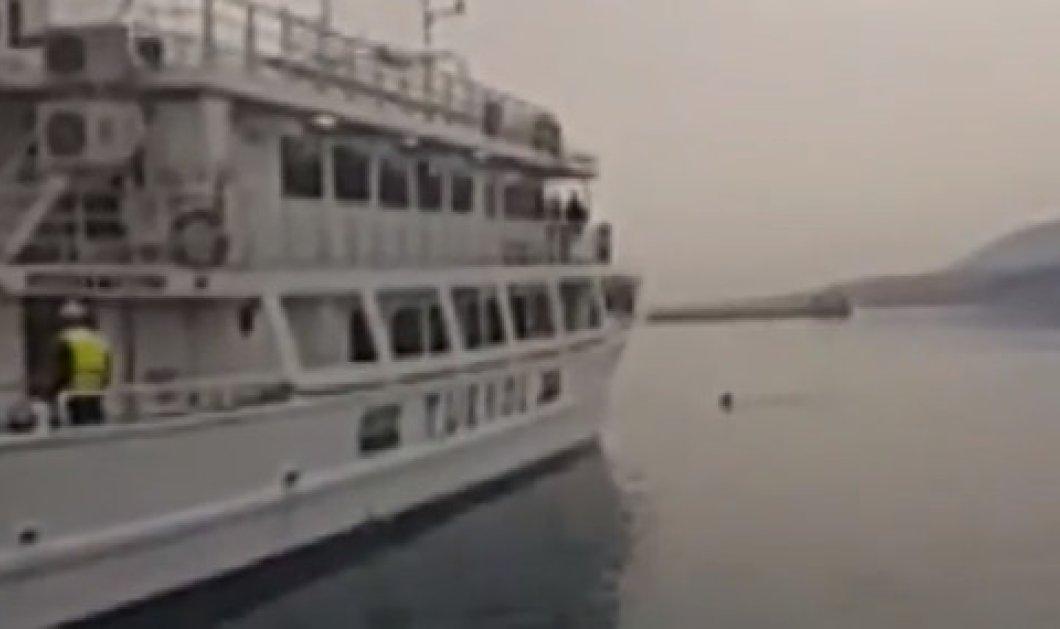 Πανικός στην Μυτιλήνη: Ακτιβιστές έπεσαν στη θάλασσα για να μην φύγει το πλοίο με τους μετανάστες προς Τουρκία - Κυρίως Φωτογραφία - Gallery - Video