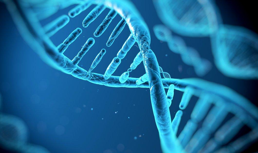Πρωτεΐνη γεννιέται για πρώτη φορά μέσα σε ένα ζωντανό κύτταρο  - Κυρίως Φωτογραφία - Gallery - Video