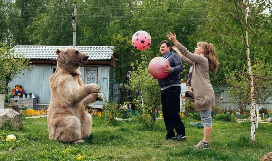 Story of the day: Ζευγάρι Ρώσων ζει εδώ και 23 χρόνια με μια αρκούδα - Την έχουν σαν παιδί τους  - Κυρίως Φωτογραφία - Gallery - Video