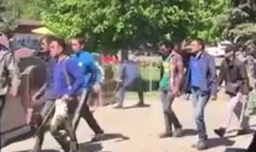 Απίστευτο περιστατικό βίας σε νεκροταφείο στη Μόσχα: Τουλάχιστον 2 νεκροί σε επεισόδια με 400 μετανάστες (βίντεο) - Κυρίως Φωτογραφία - Gallery - Video