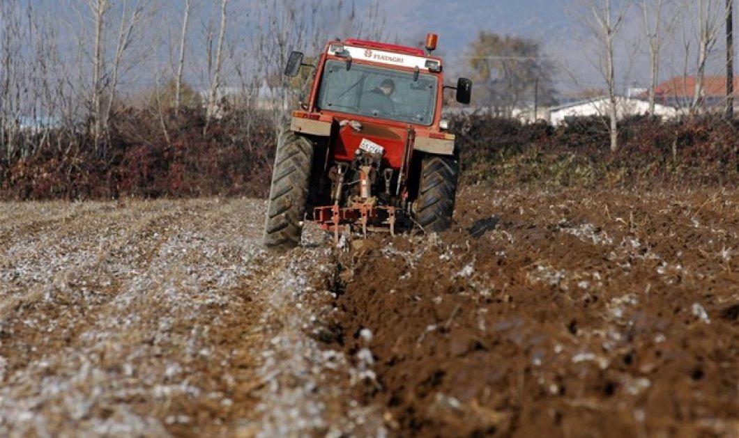 Νέο τραγικό δυστύχημα με τρακτέρ στην Κρήτη: Νεκρός 49χρονος αγρότης - Κυρίως Φωτογραφία - Gallery - Video