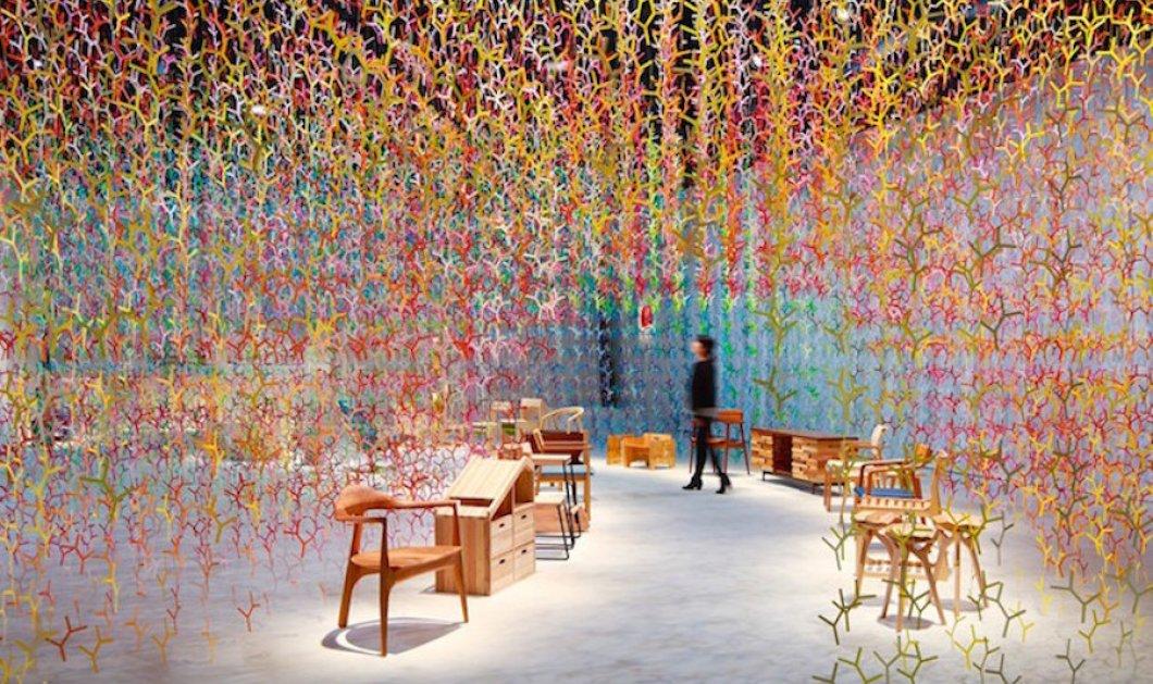 Φαντασμαγορική εγκατάσταση με 20.000 πολύχρωμα κλαδιά: Η δημιουργία ενός δάσους αλλιώς  - Κυρίως Φωτογραφία - Gallery - Video