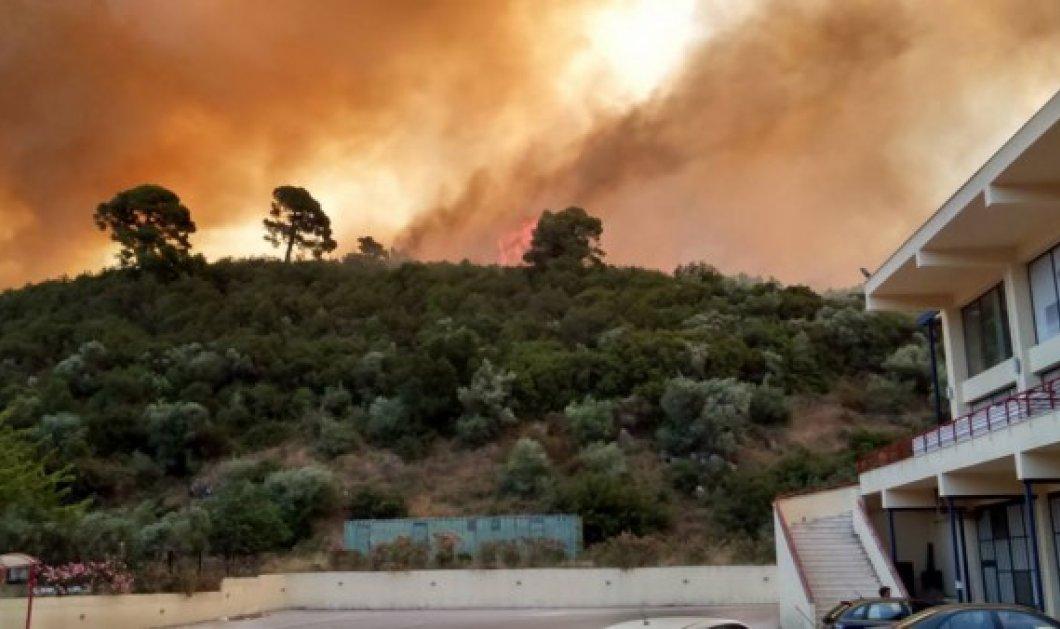 Μαίνεται ανεξέλικτη η φωτιά στην Χαλκιδική: Κάηκαν λυόμενα στο Πόρτο Καρράς (ΦΩΤΟ, ΒΙΝΤΕΟ)  - Κυρίως Φωτογραφία - Gallery - Video