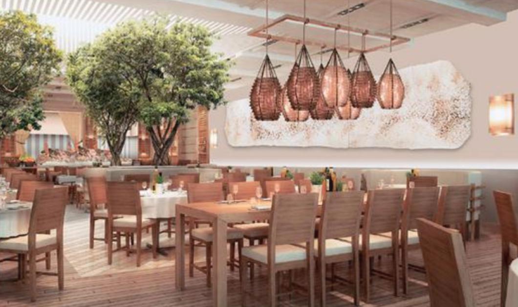 Made in Greece το γιγάντιο Ελληνικό εστιατόριο Avra Madison στη Νέα Υόρκη: Το ανοίγουν δυο ξαδέλφια από τη Ναύπακτο   - Κυρίως Φωτογραφία - Gallery - Video