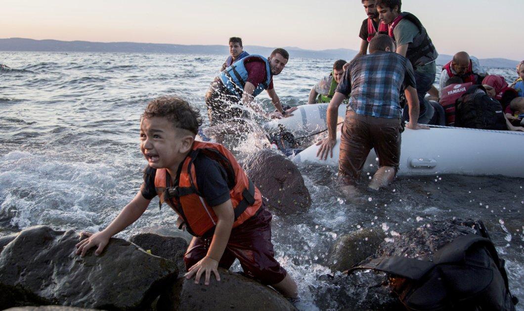 Ένταση στην Μυτιλήνη για τους μετανάστες: Κτηνοτρόφος πέταξε σακούλα με κεφάλι αρνιού στον δήμαρχο - Κυρίως Φωτογραφία - Gallery - Video
