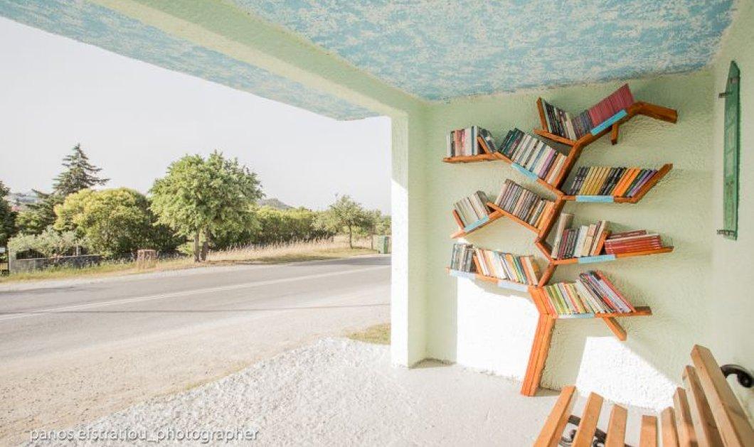 Good news: Αυτές οι στάσεις λεωφορείων γίνονται υπέροχες βιβλιοθήκες -  Μπράβο στο Φίλυρο  - Κυρίως Φωτογραφία - Gallery - Video