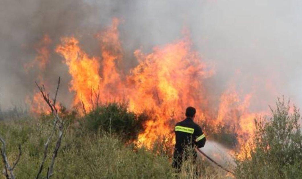 Μεγάλη πυρκαγιά μαίνεται στην Λέρο: Απειλούνται κατοικημένες περιοχές - Έκκληση για βοήθεια από τον Δήμαρχο - Κυρίως Φωτογραφία - Gallery - Video