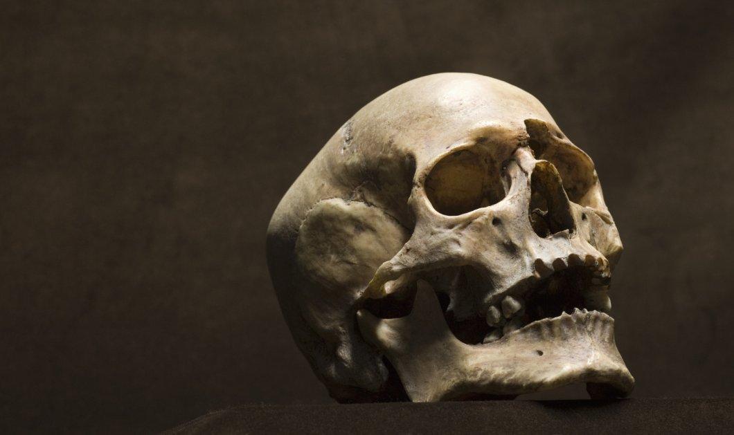 Ενα ακόμη ανθρώπινο κρανίο εντοπίστηκε στη θαλάσσια περιοχή του Μεσολογγίου - Το τρίτο σε λίγους μήνες - Κυρίως Φωτογραφία - Gallery - Video