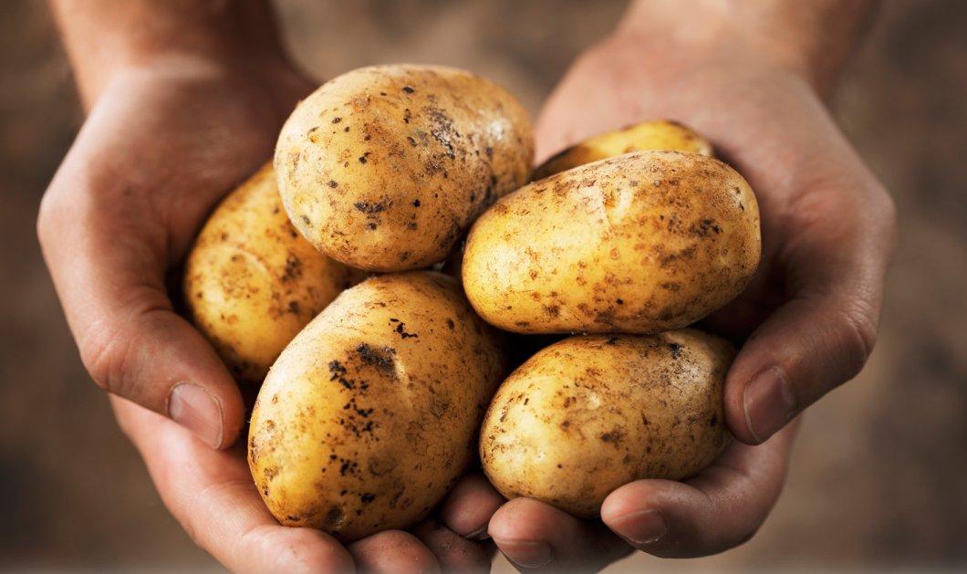 Οι πατάτες αυξάνουν τον κίνδυνο εκδήλωσης υπέρτασης ακόμη & βραστές ! Οι τηγανητές αστό καλύτερα  - Κυρίως Φωτογραφία - Gallery - Video