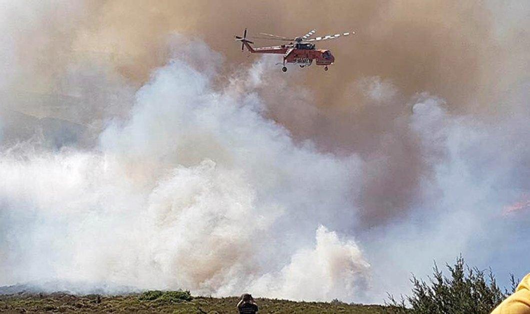 Νέα πύρινα μέτωπα σε Αττική, Μεσολόγγι, Καβάλα, Ροδόπη και Λιβαδειά - Σε ύφεση οι χθεσινές πυρκαγιές - Κυρίως Φωτογραφία - Gallery - Video