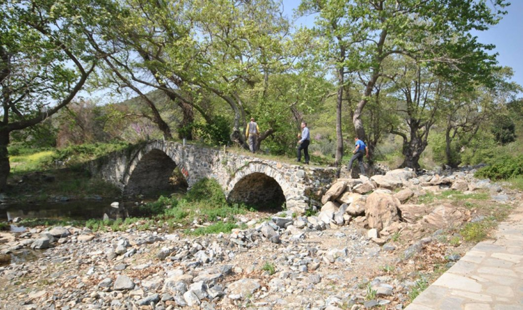 "Good news: Έλληνες και Γερμανοί εθελοντές ενώνουν τις δυνάμεις τους για να ""σώσουν"" ένα πέτρινο μονοπάτι στη Χαλκιδική - Κυρίως Φωτογραφία - Gallery - Video"