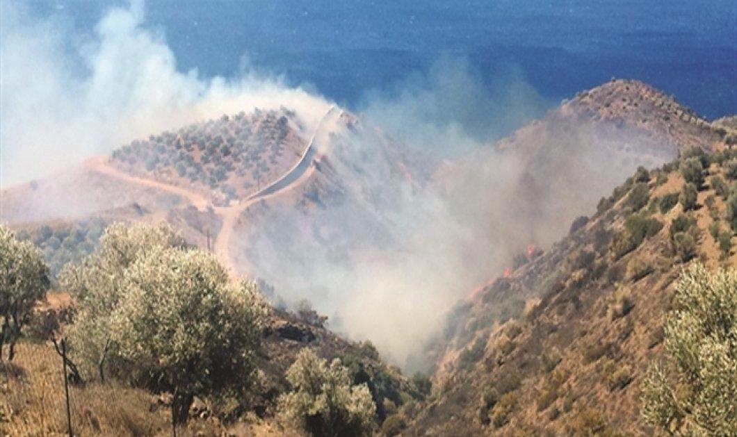 Μάχη με τις φλόγες στην Κρήτη - Απειλεί σπίτια η πυρκαγιά που ξέσπασε στις Βασιλειές Ηρακλείου  - Κυρίως Φωτογραφία - Gallery - Video