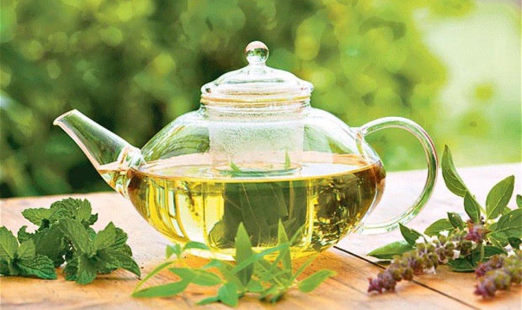 Το πράσινο τσάι προλαμβάνει το ανεύρυσμα κοιλιακής αορτής - Δείτε γιατί    - Κυρίως Φωτογραφία - Gallery - Video