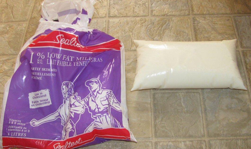 Γιατί στον Καναδά το γάλα μπαίνει σε σακούλα και ποτέ σε χάρτινο ή πλαστικό μπουκάλι;  - Κυρίως Φωτογραφία - Gallery - Video