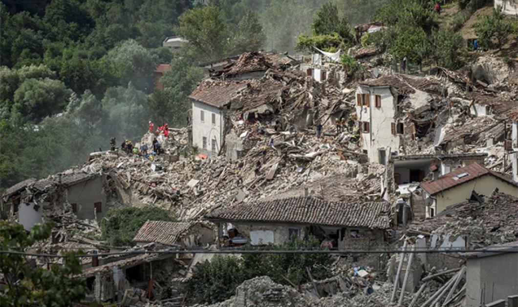 Πιέτρο & Τζορτζιάνα: Δυο «επτάψυχα» γατάκια σώθηκαν δύο βδομάδες μετά το σεισμό στην Ιταλία - Κυρίως Φωτογραφία - Gallery - Video