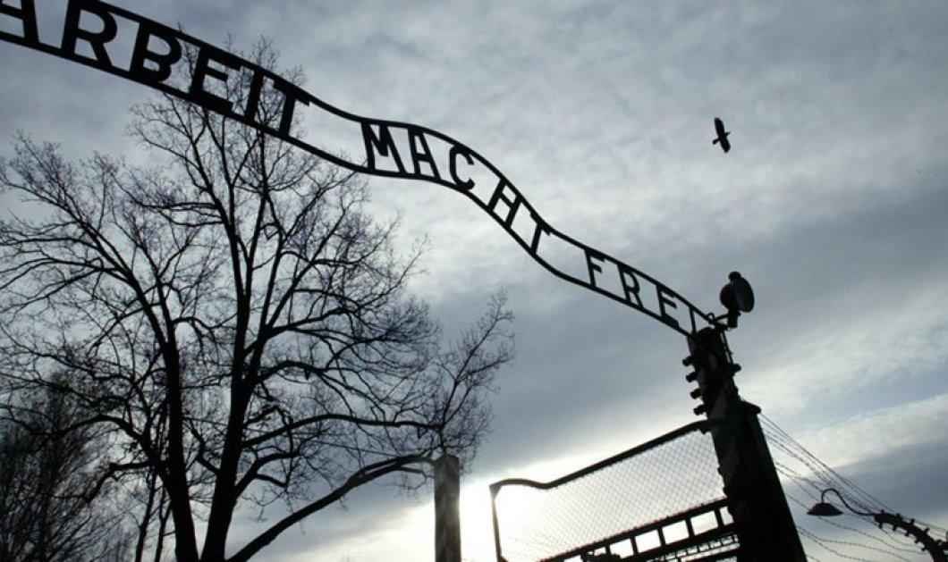 Post war horror: Βρέθηκαν ανθρώπινα μέλη & εγκέφαλοι θυμάτων του Ολοκαυτώματος - Τα χρησιμοποιούσαν οι ναζί σε πειράματά τους - Κυρίως Φωτογραφία - Gallery - Video