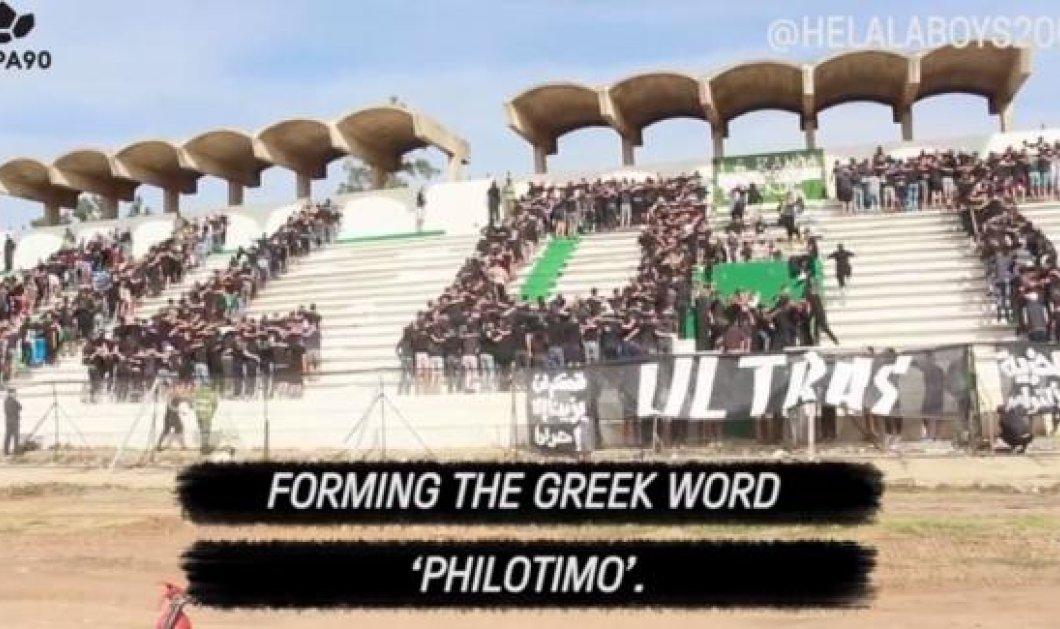 """Εντυπωσιακό! Oπαδοί στο Μαρόκο σχηματίζουν στις κερκίδες του γηπέδου την ελληνική λέξη """"Φιλότιμο"""" - Δείτε το βίντεο - Κυρίως Φωτογραφία - Gallery - Video"""