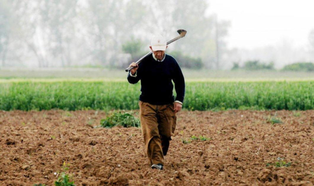 """Αγρότης στη Θεσσαλία κόντεψε να τρελαθεί όταν έμαθε πως """"χρωστά"""" στην τράπεζα 1 δισεκατομμύριο ευρώ! - Κυρίως Φωτογραφία - Gallery - Video"""