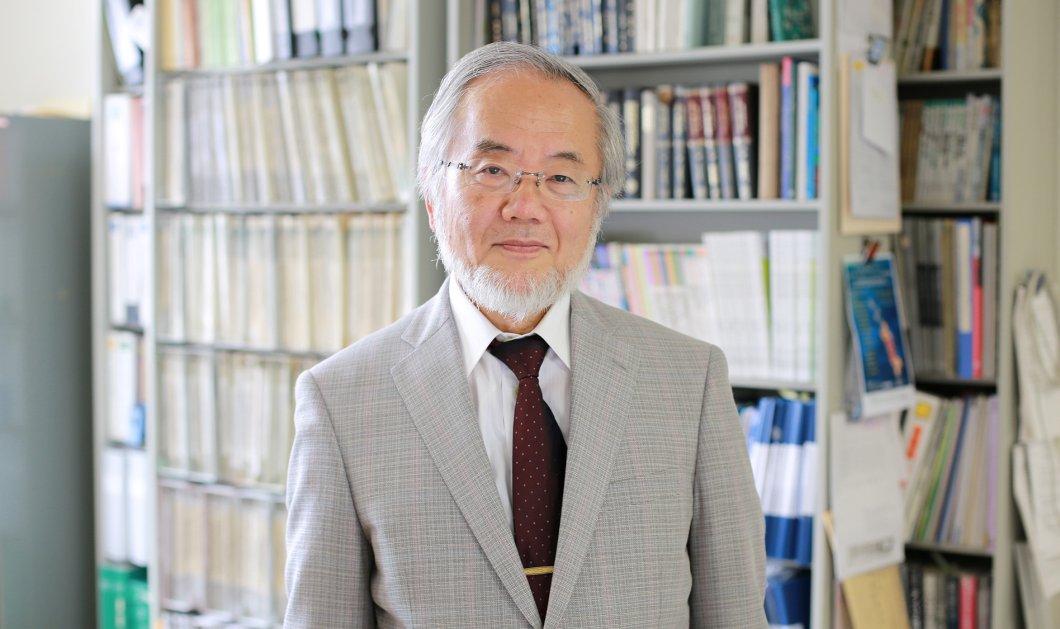 To Νόμπελ Ιατρικής 2016 στον Ιάπωνα Γιοσινόρι Οσούμι: Έδωσε την απάντηση στην πείνα, τις λοιμώξεις, τον καρκίνο & το Πάρκινσον - Κυρίως Φωτογραφία - Gallery - Video