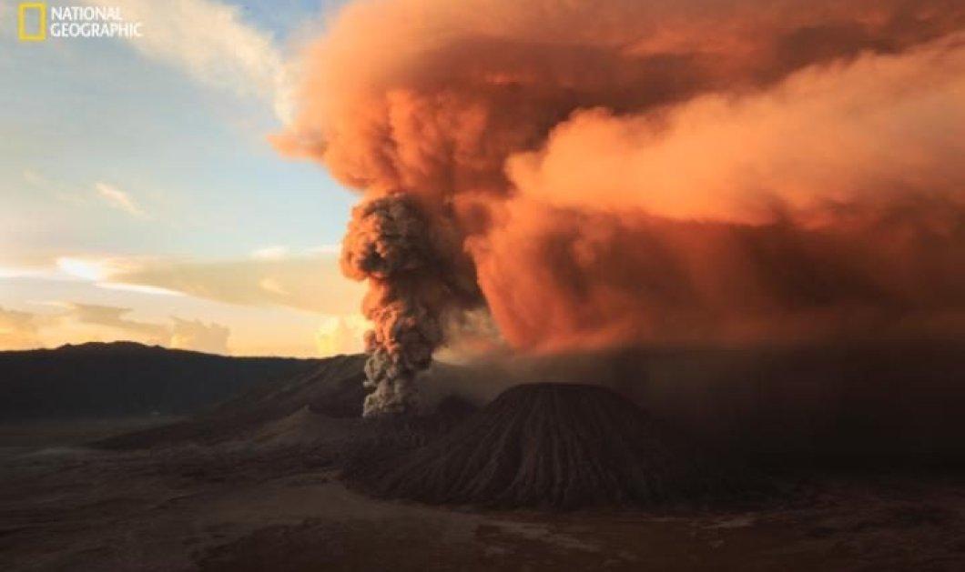 Ποιο είναι το ταξίδι που δίνει δώρο το National Geographic στον νικητή για την καλύτερη φωτογραφία από την φύση; - Κυρίως Φωτογραφία - Gallery - Video