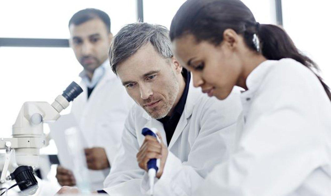 Επιστημονικό θαύμα: Δημιούργησαν για πρώτη φορά στο εργαστήριο μίνι-έντερα ανθρώπου με νεύρα από βλαστικά κύτταρα - Κυρίως Φωτογραφία - Gallery - Video