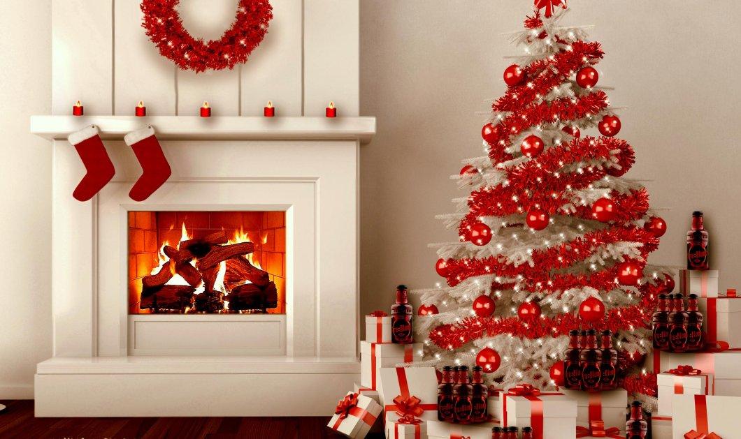 11 βήματα για να φτιάξετε το τέλειο χριστουγεννιάτικο δέντρο - Ο Σπύρος Σούλης μας δείχνει τον τρόπο - Κυρίως Φωτογραφία - Gallery - Video